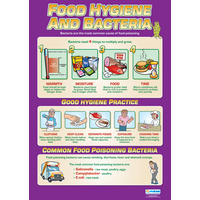 Design and Technology School Poster - Food Hygiene and Bacteria