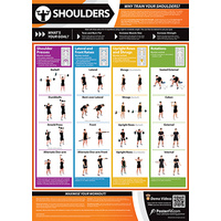 Gym and Fitness Chart -Shoulders (L)