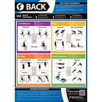Gym and Fitness Chart - Back (L)