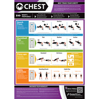 Gym and Fitness Chart -Chest (L)