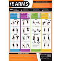 Gym and Fitness Chart - Arms (L)