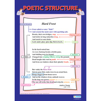 English school Poster - Poetic Structure