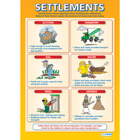 Geography School Poster-  Settlements