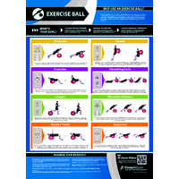 Gym and Fitness Chart - Exercise Ball