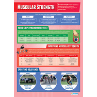 Physical Education School Poster- Strength