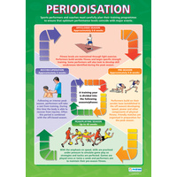 Physical Education School Poster-  Periodisation