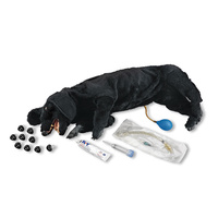 Life/form Basic Sanitary CPR Dog