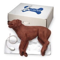 Canine CPR Simulator - CasPeR The CPR Dog Manikin