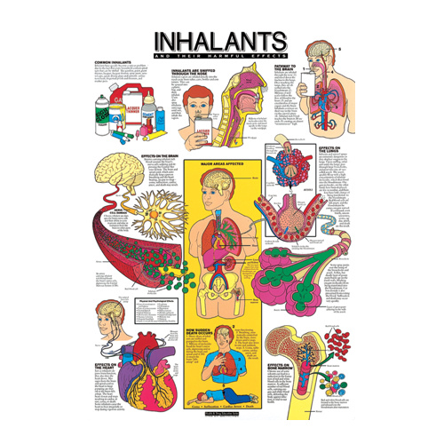 Inhalants and Their Harmful Effects