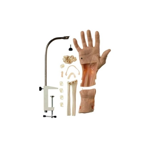 CLA Arthroscopic Simulators Of The Wrist