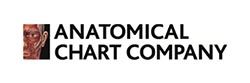 Anatomical Chart Co